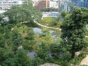 Mouri's garden