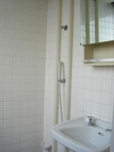 Fujiya House - Shower Room
