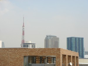 Fujiya House - View