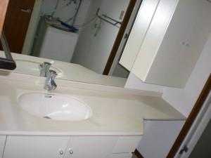 Aoyama K Heights - Wash Room