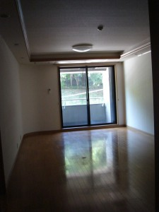 NK Aoyama Homes - Living Dining Room