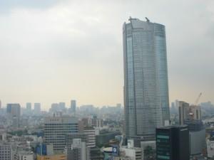 Residia Tower - View