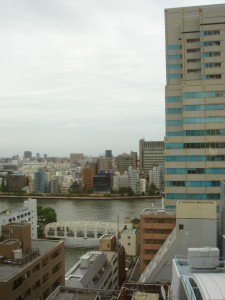 Kayabacho First Residence - View