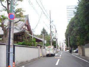 Blossom Terrace - Neighbor