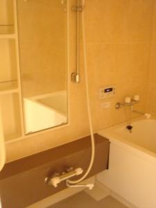 Towa Akasaka Apartment - Bathroom