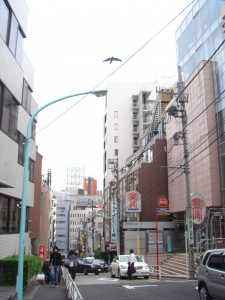 Shibuya Infos Tower Heights - Neighbor