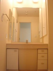 Nichirei Higashi Ginza Residence - Powder Room