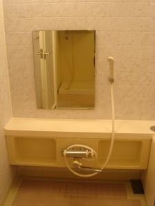 Nichirei Higashi Ginza Residence - Bathroom