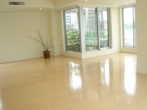 Blossom Terrace - Living Dining Room