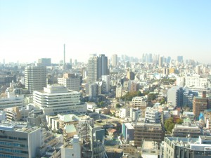 La Tour Iidabashi - View