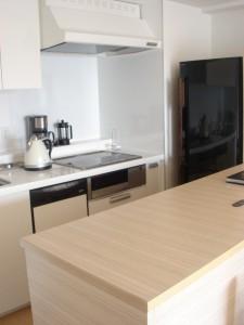 Roppongi Duplex M's - Kitchen