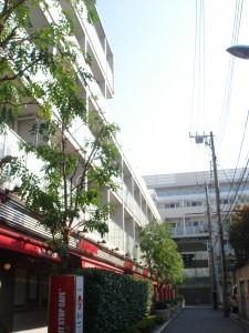 Roppongi Duplex M's - Outward Apperance