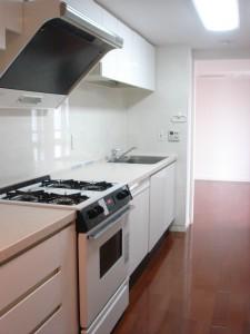 Windsor House Hiroo - Kitchen