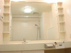 Zedoan Hiroo - Bathroom