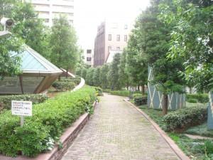 Aoyama Park Tower - Entrance