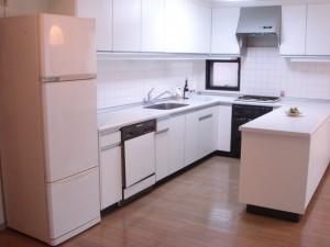 Linde Jingumae - Kitchen