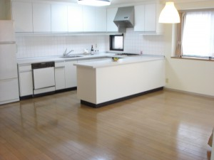 Linde Jingumae - Living Dining Kitchen
