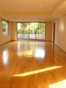 Residia Yoyogikoen - Living Dining Room