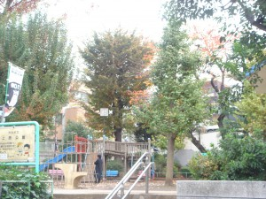 La Tour Yoyogiuehara - Neighbor