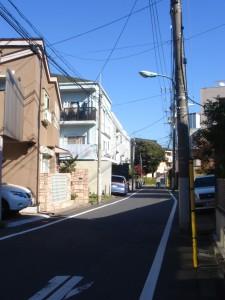 Palace Royal Chojamaru - Neighbor