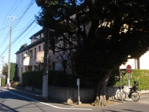Palace Royal Chojamaru - Outward Appearance