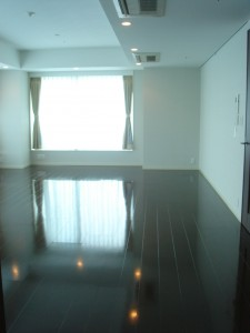 Platine Shinjuku Shintoshin - Living Dining Room
