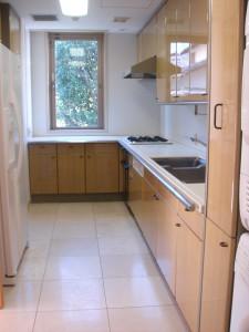 Minami-aoyama Takagicho Park Mansion - Kitchen