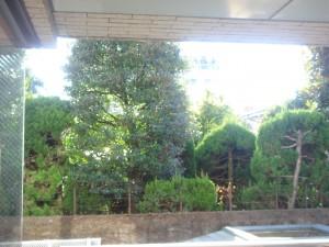 Minami-aoyama Takagicho Park Mansion - View