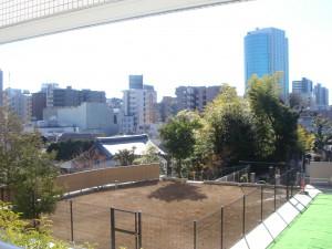 Minami-azabu Duplex R's - View