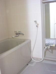Palais Royal Minami-aoyama - Bathroom