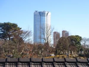 Residia Minami-aoyama - View