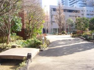 Millennium Garden Court - Garden