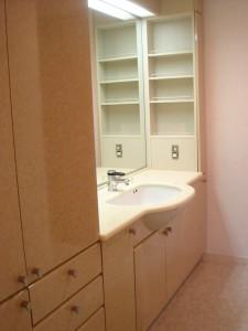 Park Avenue Jinnan - Powder Room