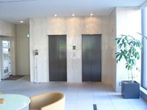Park Avenue Jinnan - Elevator