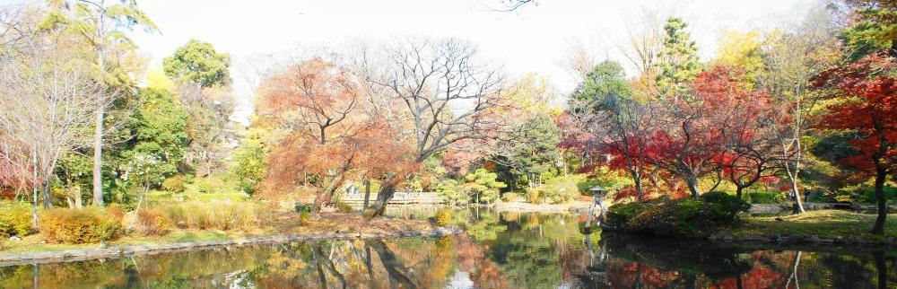 arisugawa-park_picmonkeyed1